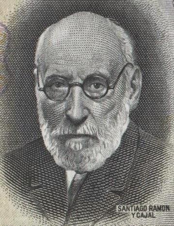 retrato santiago ramon y cajal
