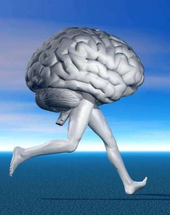 actividad-fisica-importante-mantener-cerebro_OLEIMA20121127_0073_17