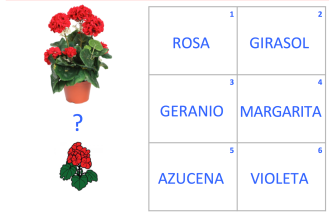 VOC-Flores-Ej3