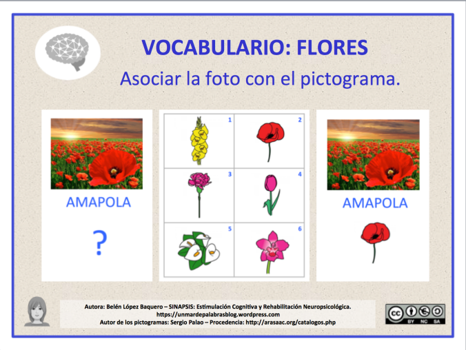 VOC-Flores