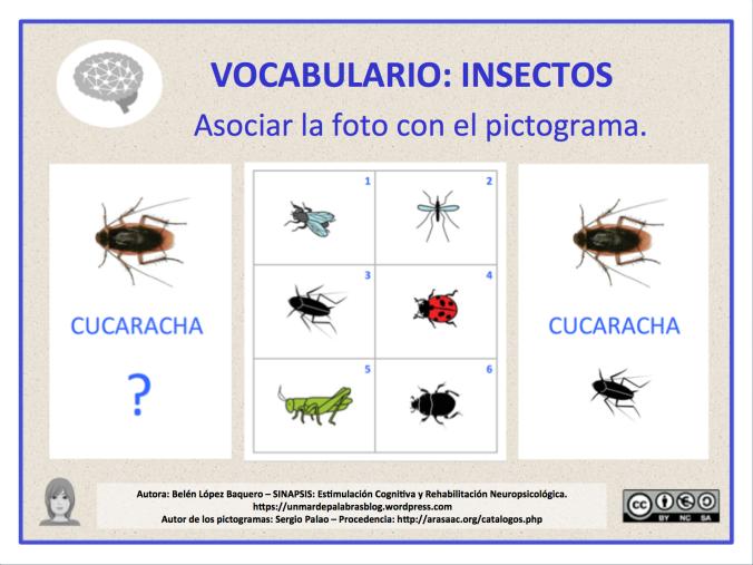 VOC-insectos