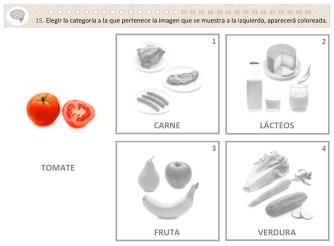 alimentos-4cat-1a
